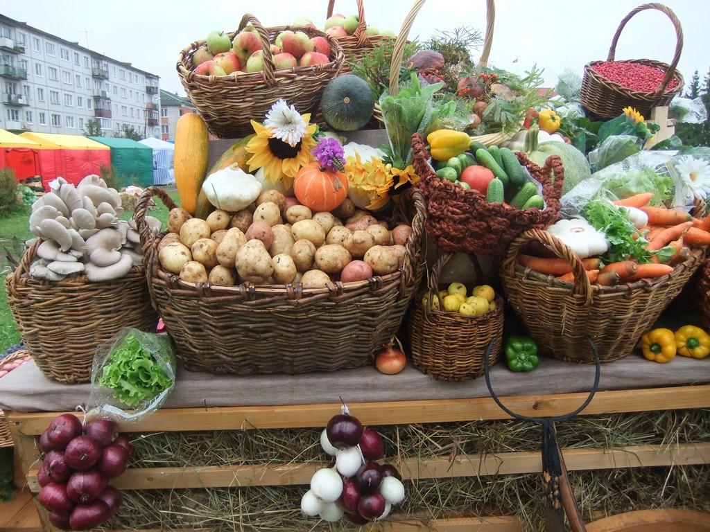 Сельхоз ярмарка