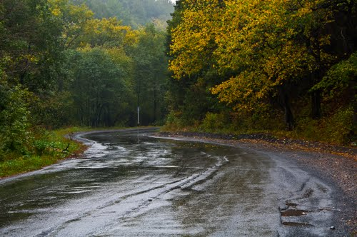 Дорога на Вязовую