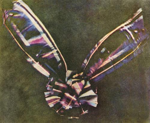 Первая в мире цветная фотография 1861 год